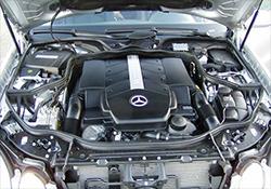 East Coast European Automotive Repair, Jupiter FL, 33458, Auto Repair, Audi Repair, BMW Repair, Mercedes Repair and Volkswagen Repair
